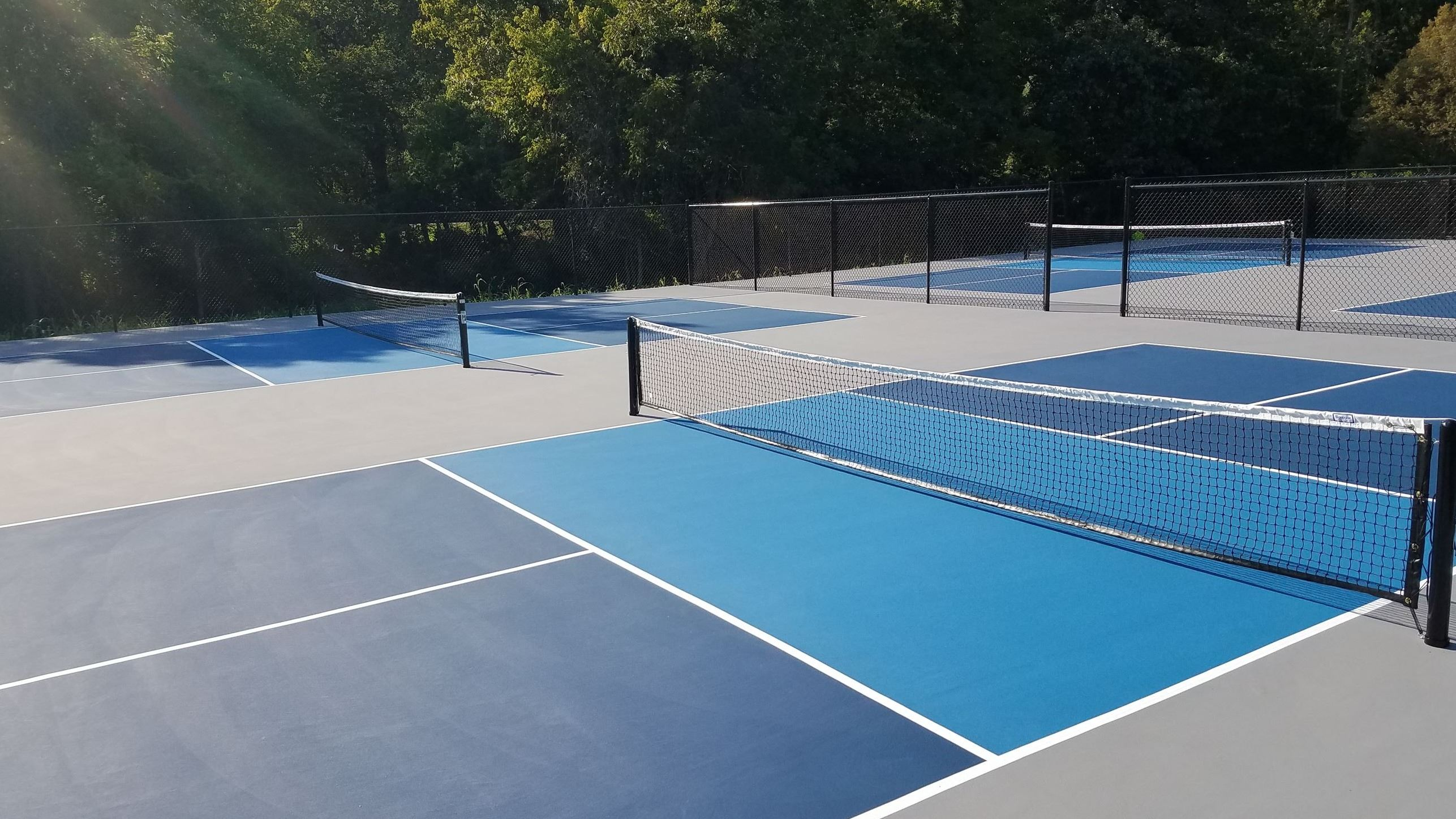 Painted Pickleball